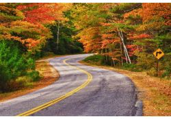 fall color tour driving